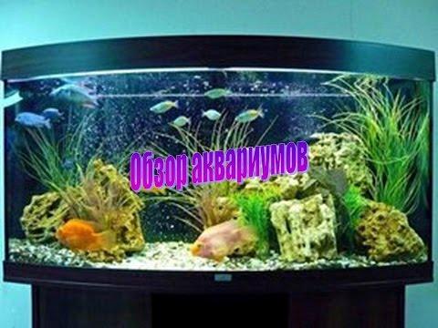 Изготовление аквариума в домашних условиях скачать