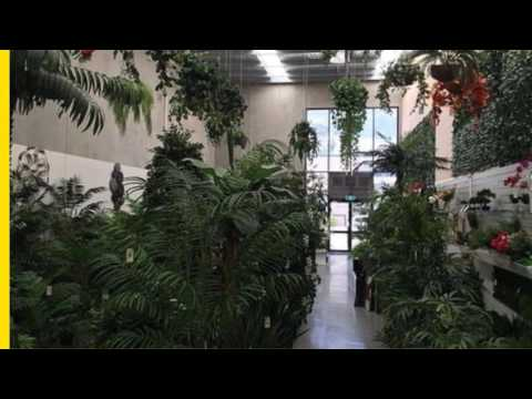 Garden nursery business for sale in New South Wales, Sydney, Penrith