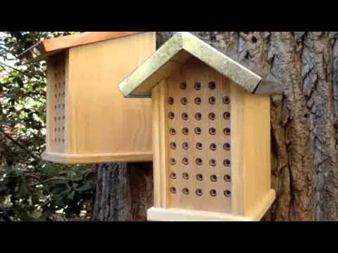 make a bee hotel insektenhotel bauen woodworking doovi. Black Bedroom Furniture Sets. Home Design Ideas