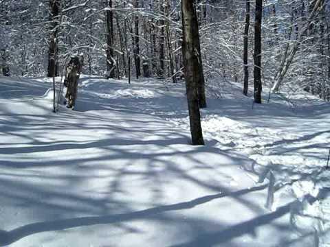 XC Skiing in Barnes Corners, NY - YouTube