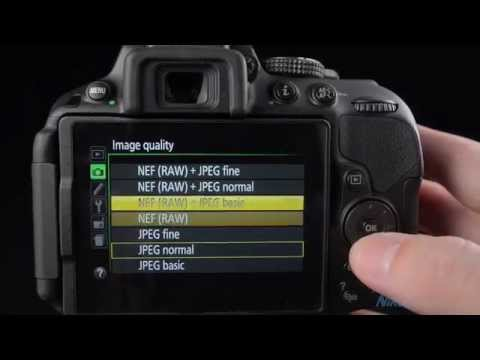 Nikon D5300 Review & Tutorial