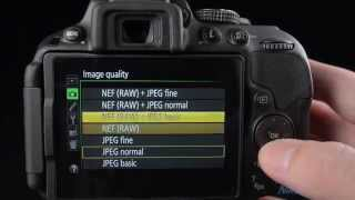 Nikon D5300 Review & Tutorial