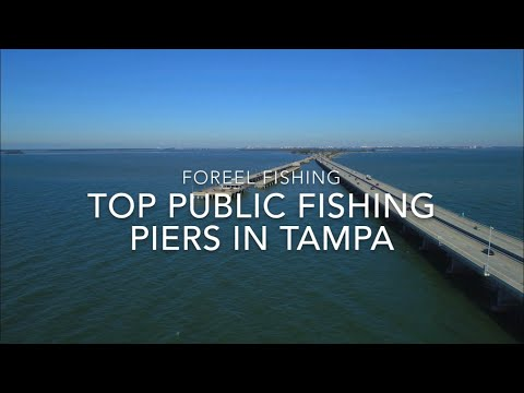 Top Public Fishing Piers In Tampa Bay!