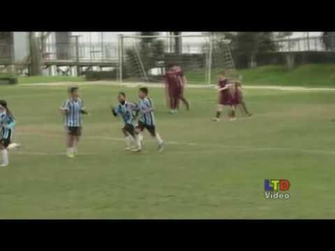 Escola Grêmio 6x0 Futebol Total cat