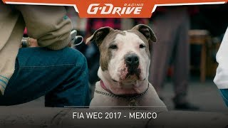 Welcome to Mexico City | G-Drive Racing