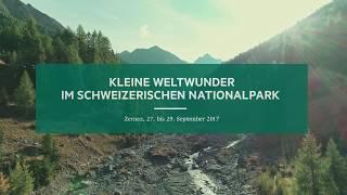Kleine Weltwunder im Schweizerischen Nationalpark