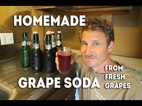 Grape Soda: From Fresh Organic Grapes To Fizzy Drink