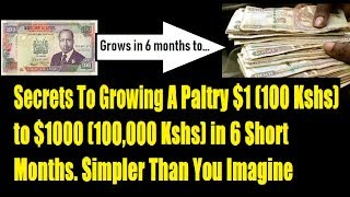 How To Invest ($1) Kshs 100 And Grow It To ($1K) 100K In 6 months