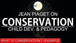 Conservation by Piaget | Meaning, Concept and Examples