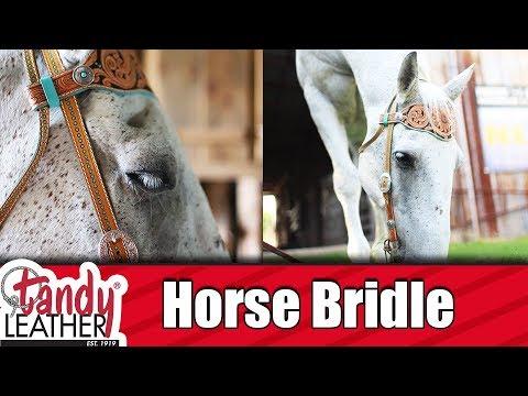 Bridle DIY
