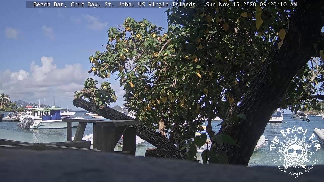 Beach Bar St. John HD Webcam in Cruz Bay