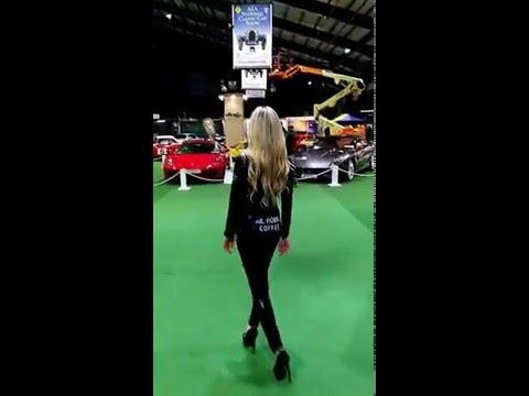 The Axa National Classic Car Show,Dublin 2016