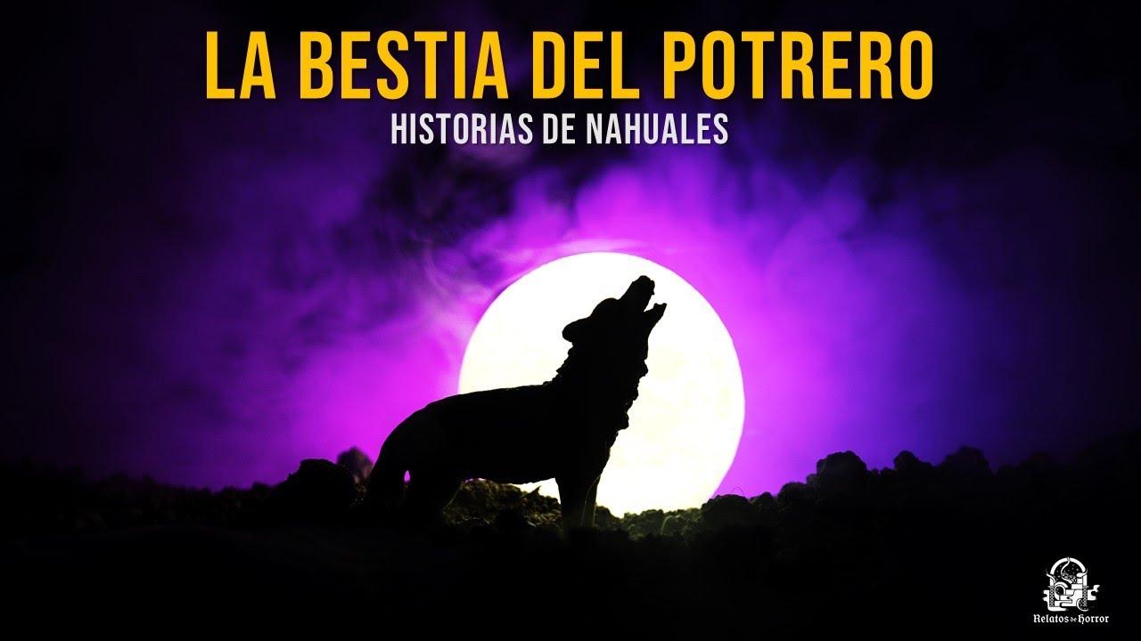 La Bestia Del Potrero (Relatos De Horror)