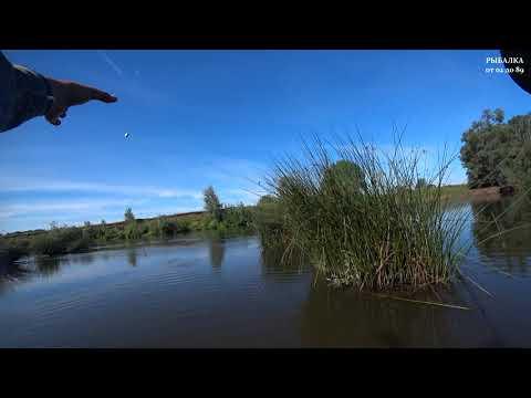 Летние приключения на реке Белая. Рыбалка 2020. Ловля на кузнечика.