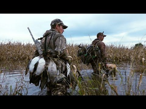 Flooded Corn Duck Hunt & Iowa Goose Hunting | Cabela's Northern Flight