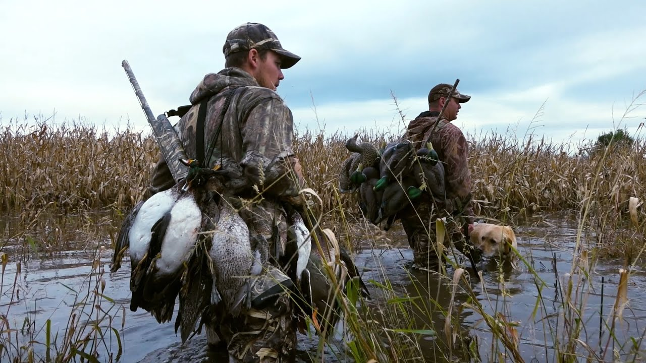 Flooded Corn Duck Hunt Amp Iowa Goose Hunting Cabela S