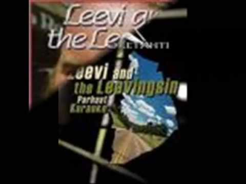 leevi-and-the-leavings-matkamuistoja-joux666