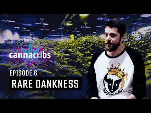 Rare Dankness & House of Dankness Cannabis - Scott Reach (S1E6: Canna Cribs, Denver, CO)