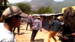 Los pescados de quechultenango