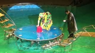 Цирк на воде  Клоуны