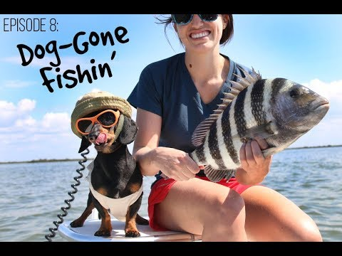 Episode 8: Dog-Gone Fishin'