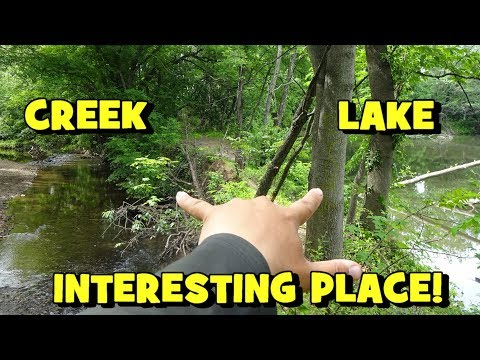 SO MANY SPECIES!!! Fishing A Somewhat INTERESTING & SKETCHY Spot!