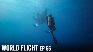 GIANT MANTA RAY DIVING!  - World Flight Episode 66