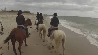 [Un moment avec nous] Ballade sur la plage à cheval♥ GOPRO