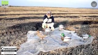 Охота на утку на полях видео