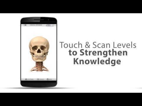 Anatomy Game Anatomicus Pro Apps On Google Play
