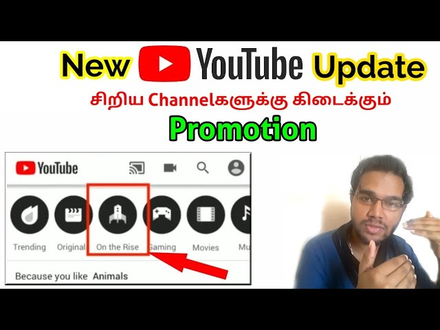 Promoting Smaller Channels On Youtube On The Rise In Explore Vs Professional Group Tamil