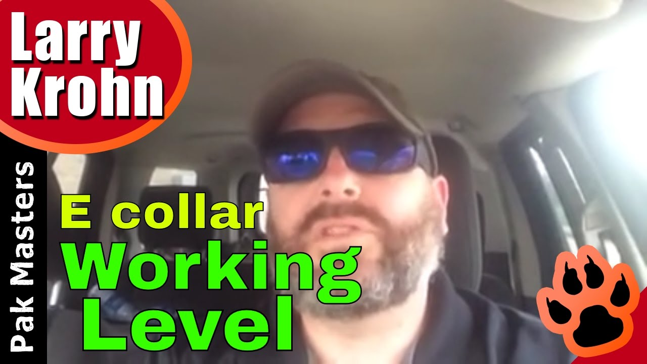 What to do when you can't find the dog's working level on the e collar /  remote collar