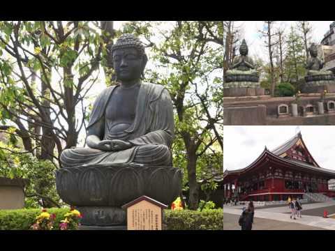 Shukotoku School Trip Tokyo 2013-Display