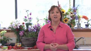 Garden Design & Care : How to Become a Botanist