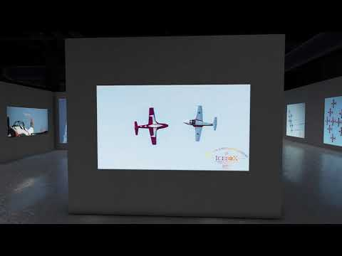 Snowbirds Pictures in 3D Modern Art Gallery Video