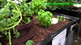 Aquaponic source video
