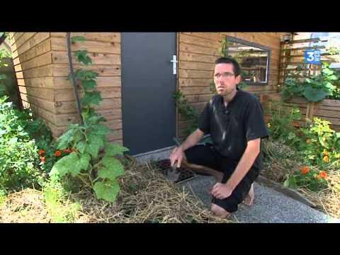 Mon jardin potager urbain permaculture sept 2015 doovi for Jardin urbain permaculture