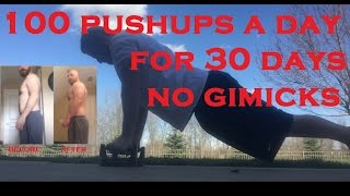 30 Day Pushup Challenge Results
