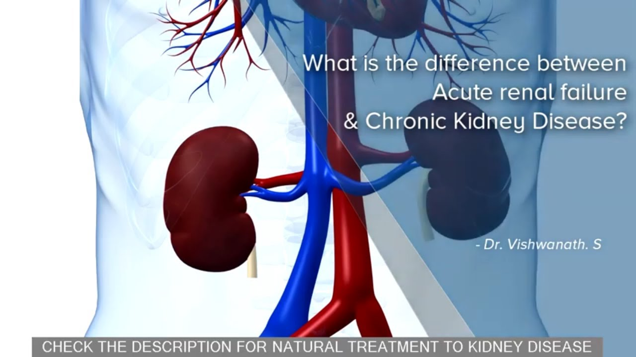 Difference Between Acute Renal Failure Chronic Kidney Disease Youtube