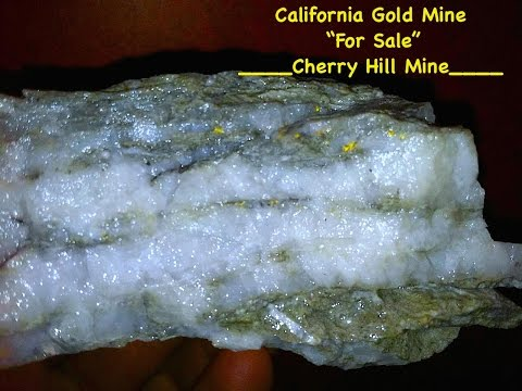 California Gold Mine