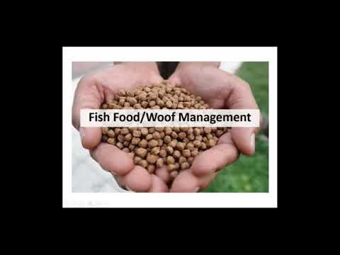 Biofloc Fish Farming Banlga Training Part 5 | Biofloc Feed