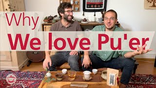 Why Pu'er Is Our Favourite Tea…