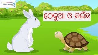 Odia Gapa - Thekua O Kainchha | Odia Panchatantra Kahani | Odia Children Story