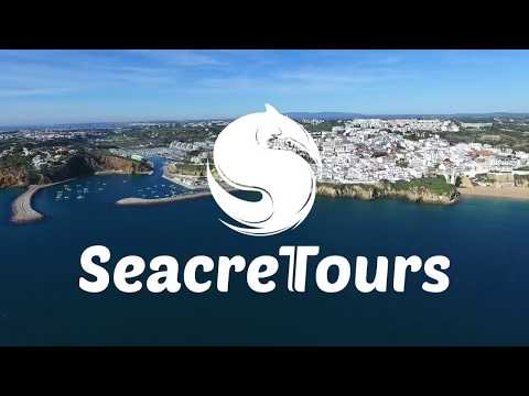 Benagil Caves & Dolphins , Starting from Albufeira Marina - Video