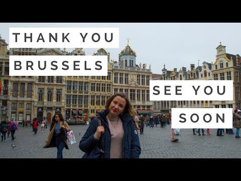 THANK YOU, BRUSSELS! | Dragonfly's Heart