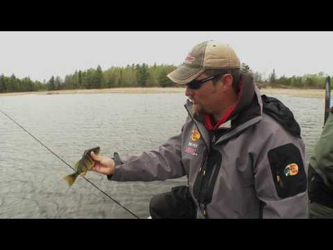 Early Spring Pike Locations