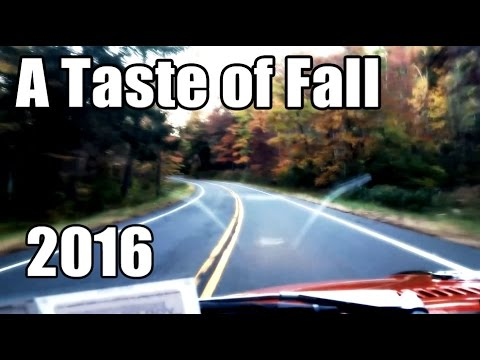 Classic VW BuGs A Taste of Fall 2016 Driving Beetle Through Hudson Valley NY
