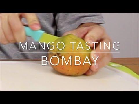 Florida Mango Tasting - Bombay Mango from PanTropic on Pine Island, FL