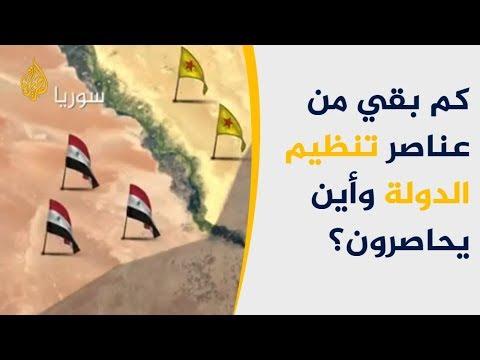 شاهد- كم بقي من عناصر تنظيم الدولة وأين يحاصرون؟  - نشر قبل 2 ساعة