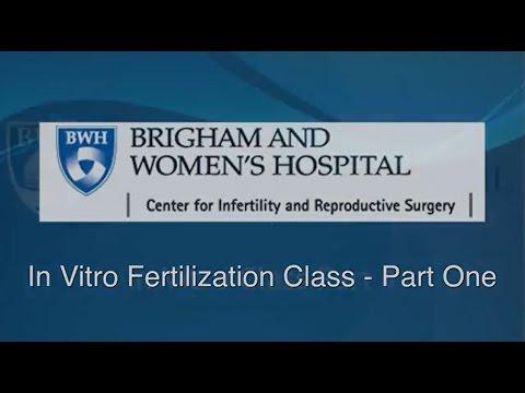 In Vitro Fertilization Class Part One Video – Brigham and Women's Hospital